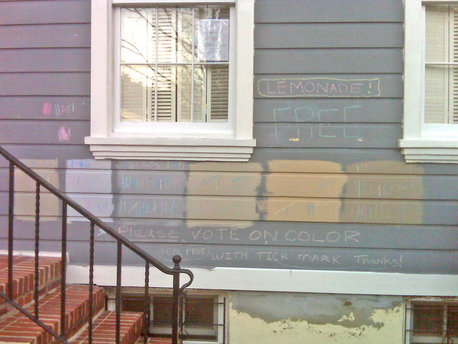 Georgetown homeowner crowdsources paint choice the for Homeowner choice